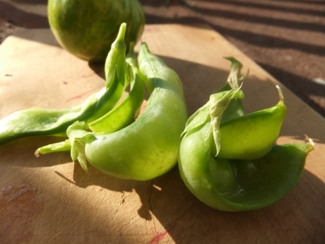 frilled and capped snow peas