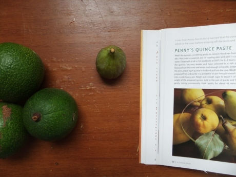 avocado, fig, book