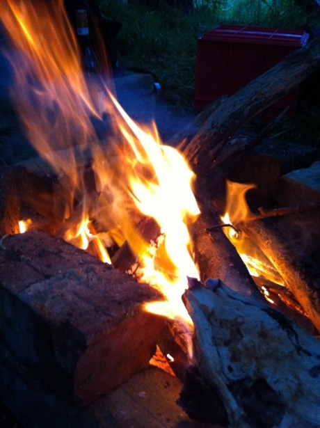 Fire and logs